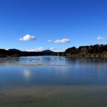 Premer Lechsee