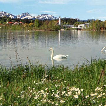 Lechsee